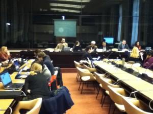 国連防災会議 障がい者分科会(